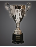metal and crystal engraved cups and trophies